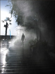 Nouvelle Vague (Christian Lagat) Tags: bridge blue light woman paris france water seine eau lumière flag femme palm bleu pont grdigital quai palmier drapeau parisplage fogger brumisateur atomizer ricohgrd