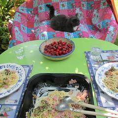 garden lunch