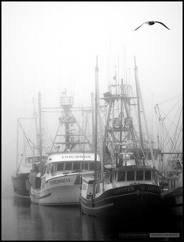 Steveston In The Fog