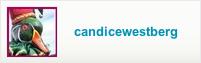 candicewestberg.etsy.com