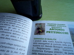 antonio pettinicchi olive oil 1