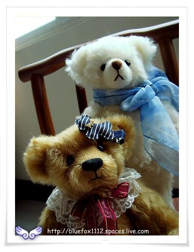 080601泰迪好朋友06_Honey & Puff