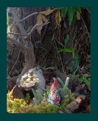 Gnome and his home. (MmmArtStudio) Tags: sculpture painting print gnome woods fairies diorama gardenart fairyhouse forestmagic originalgnomessculptureoriginalartdiaoramafairytalepostcardgardenart