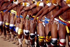 Renato Soares 14 - Mavutsinim - O ltimo Kuarup (www.renatosoares.com.br) Tags: brasil cores arte xingu ritual indios festa indigena etnias kuarup