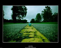 Clay Roadkill