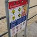 Bondi Beach_6