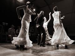 Flamenco (Steini Eythors) Tags: blackandwhite blancoynegro spain dancing feria andalucia espana granada flamenco steini bailar orsteinn thorsteinn pulianas