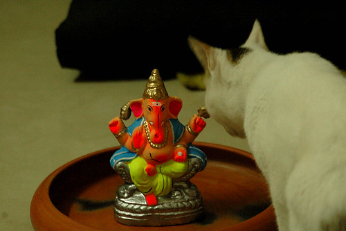 lord ganesha and the queen of my house!