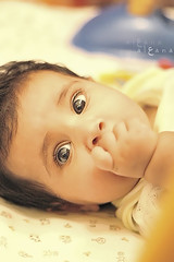,,       (a l  a n a) Tags: baby cute girl look kid eyes child hand qatar cuteeyes al3ana