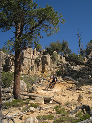 TM_WFOBerm.jpg (hukee) Tags: mountain bike utah mtb singlespeed zion transition wfo niner orbea interbike