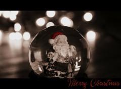 Merry Christmas to you! (henriettevisscher71) Tags: merrychristmas