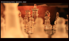 Battle time (kamikazengp) Tags: light etched glass canon chess experiment bamboo hues shatranj nandagopalchess
