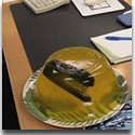 A Stapler in Jello - Classic