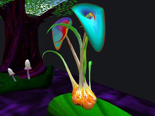 Bog lily