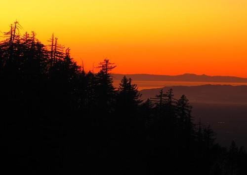 Sunset 1.17.09-9
