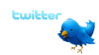 Twitter Logo and Bird