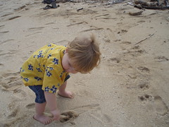 critter on kualoa beach (Llyra) Tags: vacation hawaii sand oahu christopher 2009 kualoabeach