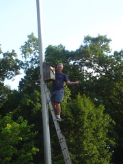 Jeff hanging bat box