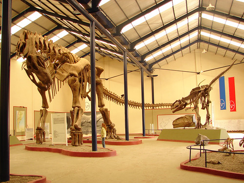 Paleontological and Geological Tourism in Neuquén