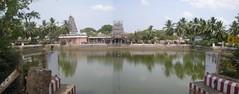 1 (Raju's Temple Visits) Tags: patti pillayar vinayagar karpaga