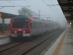 Comboio Especial n. 13816 - Nine (valeriodossantos) Tags: portugal train nine cp famalico especial comboio passageiros caminhosdef