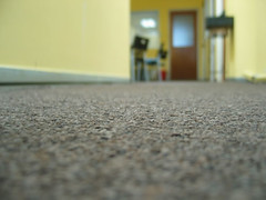 Clean, Dry Carpets