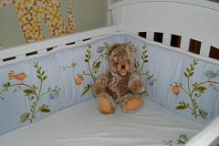 DSC_0025 (BabyTeaneck) Tags: showyourhouse apartmenttherapysanfrancisco