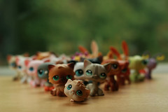 Littlest Pet Shop Bokeh - HBW! (CrzysChick) Tags: bw toy toys bokeh collection collections lps littlestpetshop hbw bokehwednesday toybokeh