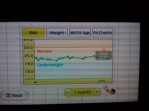 Wii Fit results
