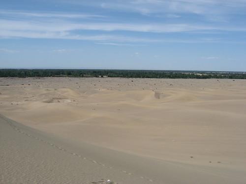 Dune, oasis and sky