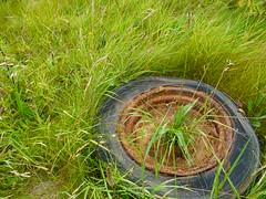 Wheel plant