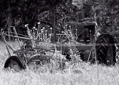 Old Equipment (hz536n/George Thomas) Tags: summer tractor oklahoma stillwater 2008 smörgåsbord cs3 bampw canon30d kartpostal canonef70200mmf4lusm