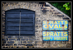 The Dog's Ovals (rowteight) Tags: old signs ovals signage adverts spratts flickrgolfclub