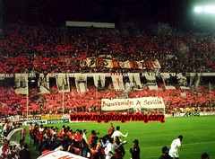 139 (sfcfans) Tags: club sevilla ftbol norte ultras biris