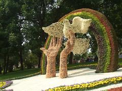 Kyiv Flower-show 2008