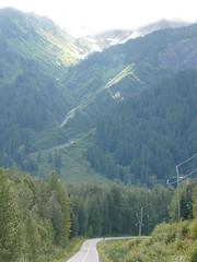 Glaciares y bosques camino a Stewart