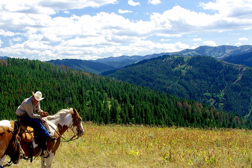 Enjoying the view - Wyoming on horseback