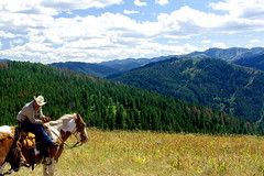 Enjoying the view - Wyoming on horseback (Al_HikesAZ) Tags: horse usa mountains caballo cheval cowboy view jackson hills explore trail riding transportation wyoming horseback saddle jacksonhole caballero equus wy trailride wrangler vaquero literaryreference inthesaddle fromthesaddle alhikesaz jackson2008 realwest
