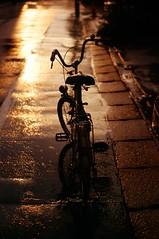 Shower of sunset (minolta SR-T101) (potopoto53age) Tags: road sunset wet rain bicycle japan shower vanishingpoint minolta kodak ektachrome 58mm e100vs soe minoltasrt101 yamanashi srt101 kofu f12 wetroad rokkor artisticexpression kodakektachromee100vs fineartphotos golddragon mywinners abigfave platinumphoto superaplus aplusphoto theunforgettablepict
