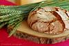 Rye Bread with Barley - Roggenbrot mit Gerste (Soupflower's Blog) Tags: barley bread 50mm baking nikon rye selfmade sourdough brot backen selbstgemacht gerste roggen sauerteig d80 flowersoup soupflowers wwwsoupflowercom spflwrs