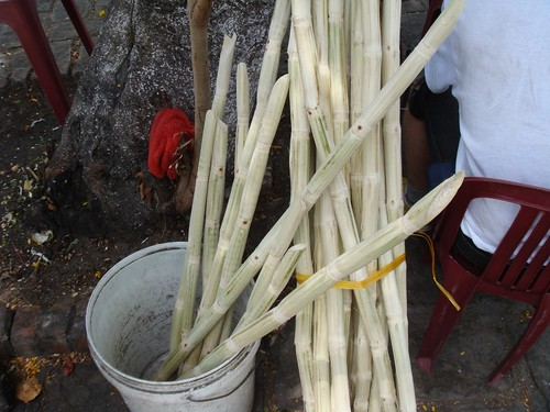 Sugar cane juice shop 01t.JPG
