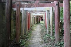 Portes shintoistes