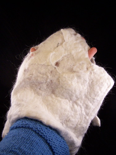 Felted mitten attempt