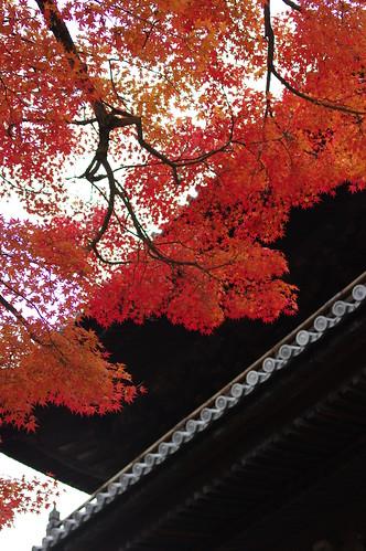 chionin/kyoto