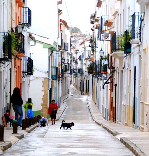 Dog crosses a street in Benissa   Spain by keithhull
