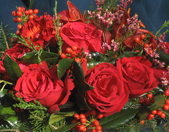 Christmas Roses on My Table (Kurlylox1) Tags: christmas flowers red roses holiday leaves table lily decoration bowl holly greenery centerpiece flowerarrangement silvertray redandgreen fullblown platinumphoto evergreenbranches