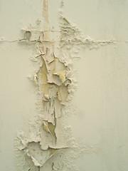 (tanakawho) Tags: texture wall peeling paint decay tanakawho