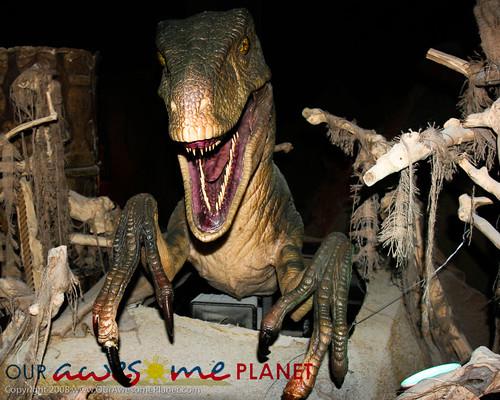 Dino's Alive-55