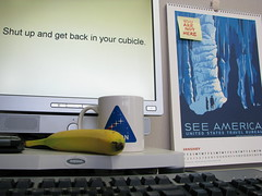 Shut up and get back in your cubicle [2009-005]