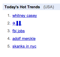 Google Hot Trends with Airplane